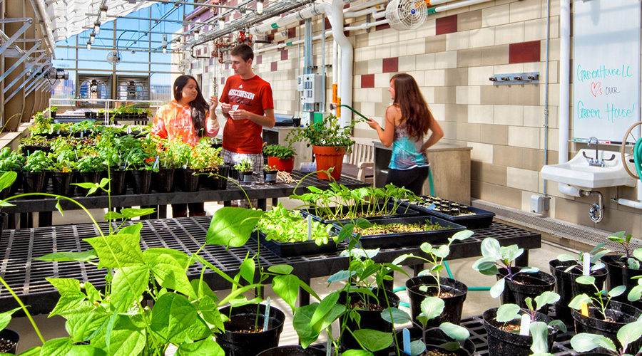 Students in the rooftop greenhouse at Leopold Residence Hall