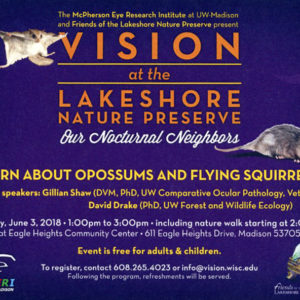 Vision of the Lakeshore Poster